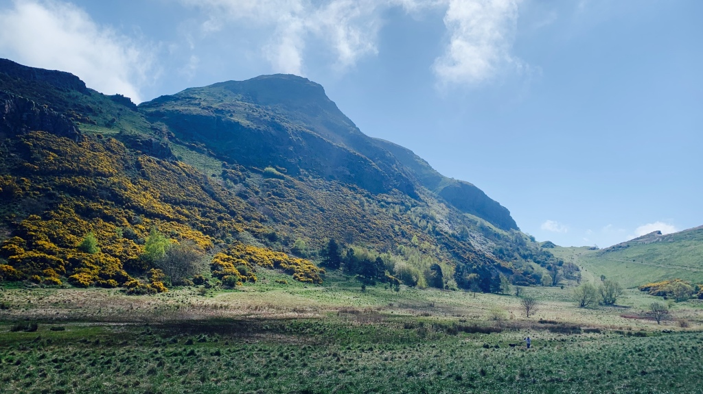 Photo of Hunter's Bog: hills and marsh